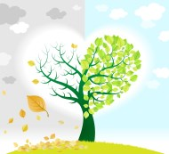 Seasons and feelings change as illustrated by tree