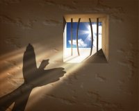 Concept of freedom and escaping a prison